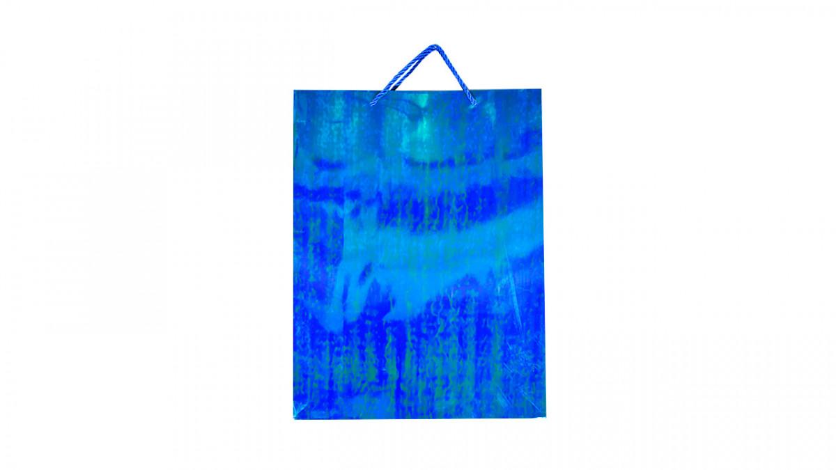 Bolsa de regalo brilloso