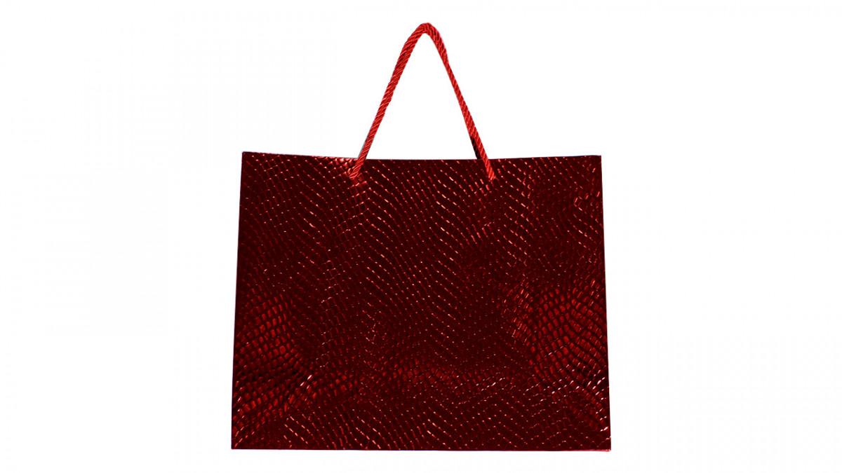 Bolsa de regalo brillosa